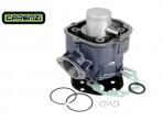 Carenzi Blue Racing 50cc Cilinder D50B0