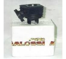 Malossi 70cc cilinderkit Honda Bali / SFX / X8R
